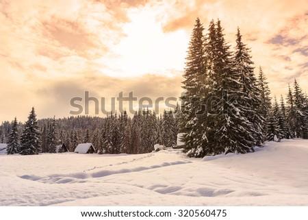 Winter landscape near Vogel ski center in mountains Julian Alps, Slovenia - stock photo