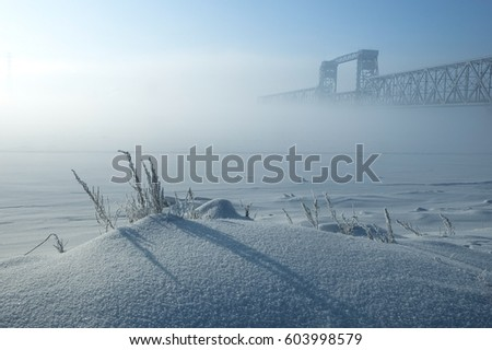 Winter landscape of foggy morning. Frozen herbs on foreground 