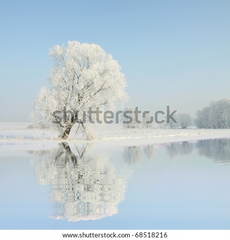 Winter landscape of frosted trees against the blue sky in December's morning. - stock photo
