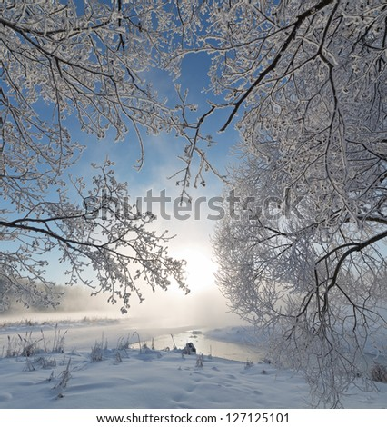 Winter landscape of tree on the edge of the river on a foggy morning at sunrise. - stock photo
