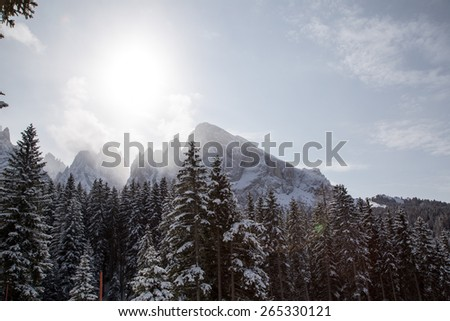 Winter landscape on sunny day /  Winter landscape on Monte Pana, South Tyrol, Italy. - stock photo