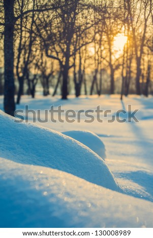 Winter landscape. Snow and sun. - stock photo