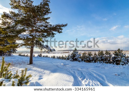 Winter landscape spruce forest in Russia, the Urals - stock photo