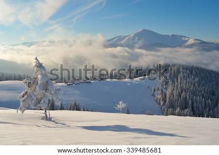 Winter landscape. Sunny day in the mountains. Snowy mountain village. Carpathians, Ukraine, Europe - stock photo
