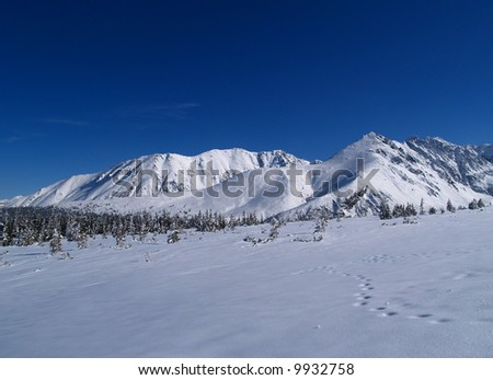 Winter Landscape, Tatra Mountains, Poland