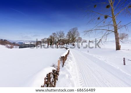 Winter landscape the Ardennes - stock photo