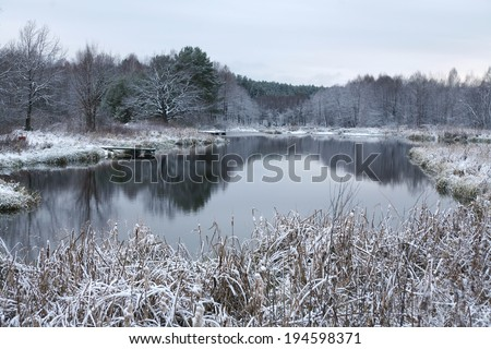 winter landscape  the first snow in field near forest and river on a cloudy day - stock photo