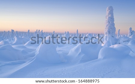Winter landscape. Trees covered with hoarfrost, deep pure crackling snow. Christmas eve. Sunny frosty day. - stock photo