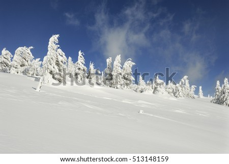 Winter Landscape, Winter Mountains, Carpathian Mountains, Ukraine