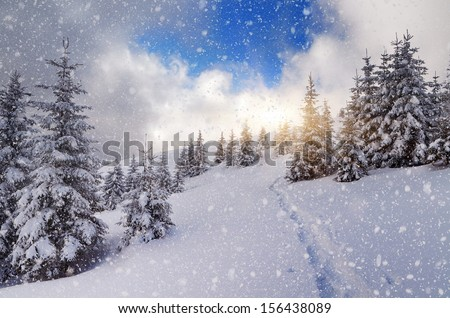 Winter landscape with a footpath on the snow in the mountain forest. Blizzard and the sun - stock photo