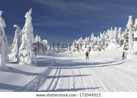 Winter landscape with a modified cross-country ski trails in Jeseniky mountains, Czech Republic. - stock photo