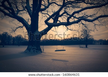 Winter Landscape with Abandoned Tree Swing. Solitude Concept. Toned Photo. - stock photo