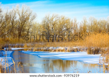 Winter Landscape with Bare Trees Reflecting in  stream - stock photo