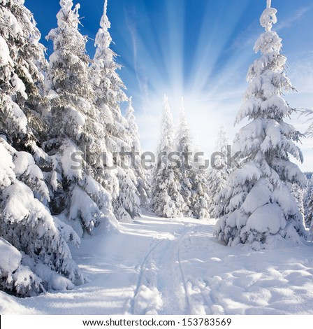 winter landscape with blue sky and sunshine - stock photo