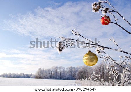 Winter landscape with Christmas ornament toy  on grass stalk - stock photo