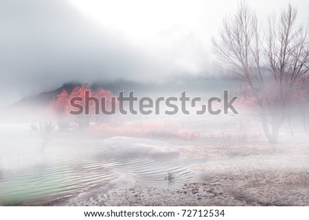 Winter landscape with fog and trees