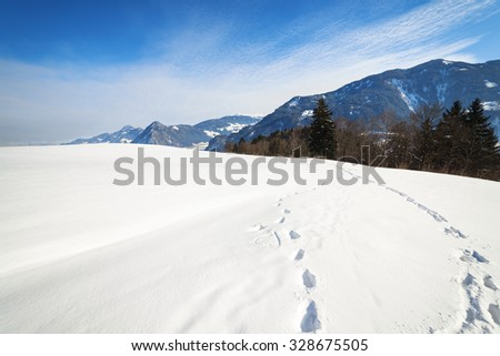 Winter landscape with foot prints in the snow