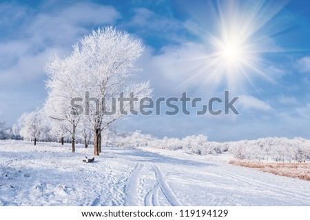 Winter landscape with frozen tree, sun, road and blue sky with clouds - stock photo