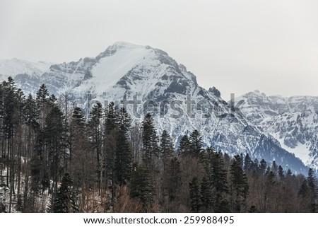 Winter landscape with misty morning over the majestic Bucegi mountains heights covered by snow, Predeal, Romania. - stock photo