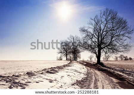 winter landscape with old grey rural road and trees, blue sky and sun - stock photo