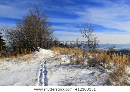 Winter landscape with path across meadow in mountains - stock photo