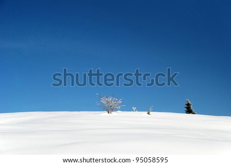 winter landscape with snow and trees - stock photo