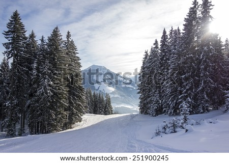 Winter landscape with snow covered trees and ski pistes, Skiwelt, Westendorf - Brixen im tale, Brixental, Kitzbuheler alpen, Austria - stock photo