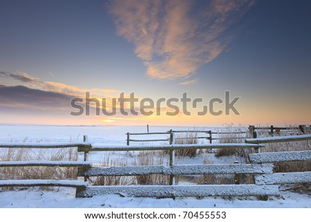 Winter landscape with snow in a field - stock photo