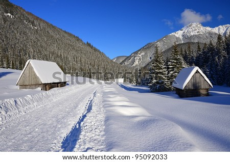 Winter landscape with snow in Chocholowska valley - Tatra Mountains - stock photo