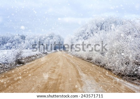 Winter landscape with the road the forest - stock photo