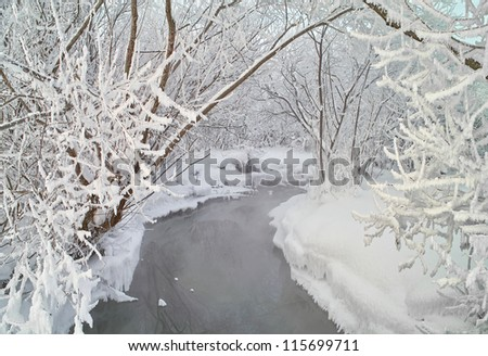 Winter landscape with the wood river. Russian winter