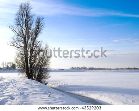 Winter landscape with tree, meadow and farm in the snow