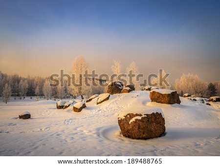 winter landscape with white birches and huge boulders - stock photo