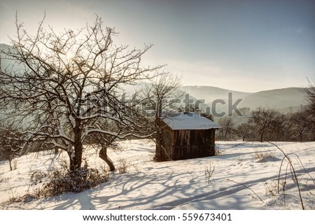 Winter Landscape with Wooden House and Tree