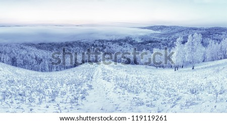 winter landscaper - stock photo