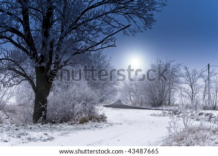 Winter landscapes, snow-covered trees. - stock photo