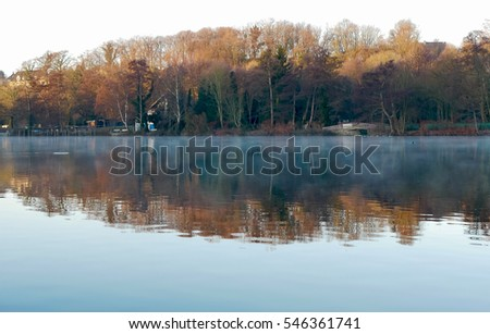 Winter Morning at the river Ruhr