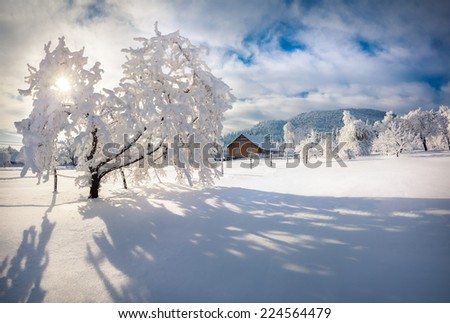 Winter morning in the Carpathian village. Sunny winter morning. Retro style. - stock photo