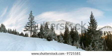 Winter morning mountain landscape with  cirrus clouds and view on  Petros Mountain (Ukraine, Carpathian Mt's)