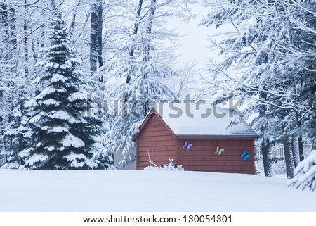 Winter morning snowy day barn, butterfly on wooden wall