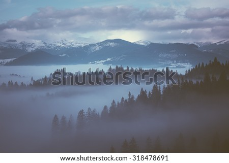 Winter Morning with fog in the mountains. Color toning. Low contrast - stock photo