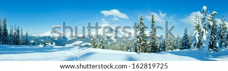 Winter mountain fir forest snowy panorama and woman tourist (top of Papageno bahn - Filzmoos, Austria) - stock photo
