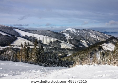 winter mountain forest snow landscape