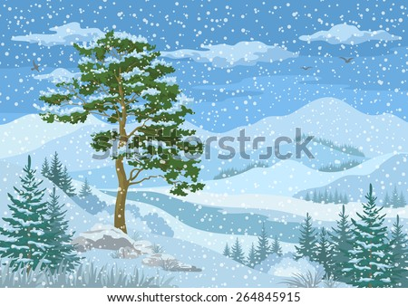 Winter Mountain Landscape with Pine and Fir Trees, Blue Sky with Snow, Birds and Clouds