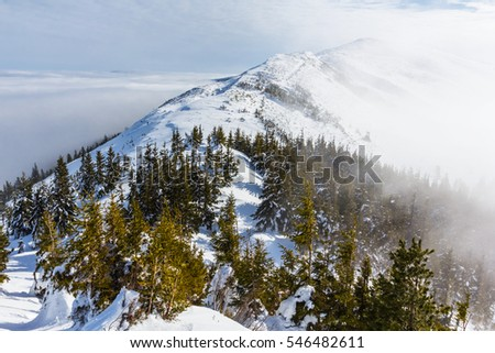 winter mountain scene in a mist