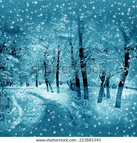 Winter nature, alley in park, snowstorm - stock photo