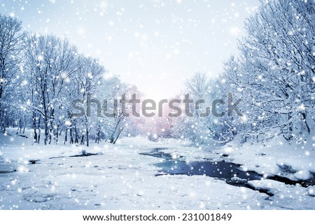 Winter nature landscape. Snowy forest, tree and a sunset. - stock photo
