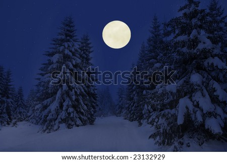 winter night moon wood - stock photo