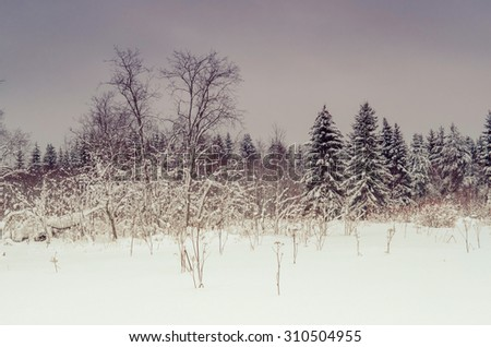 Winter of landscape. Russian nature