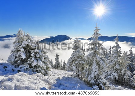 Winter on a hillside in a mountain landscape.